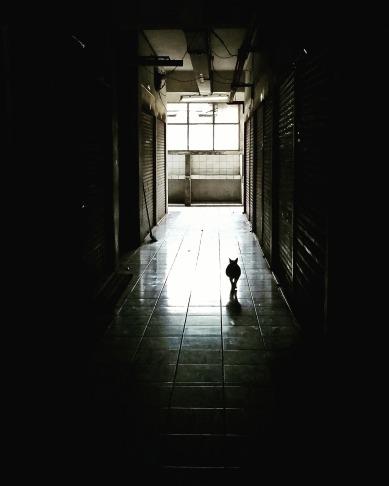 corridor-1398716_1920.jpg