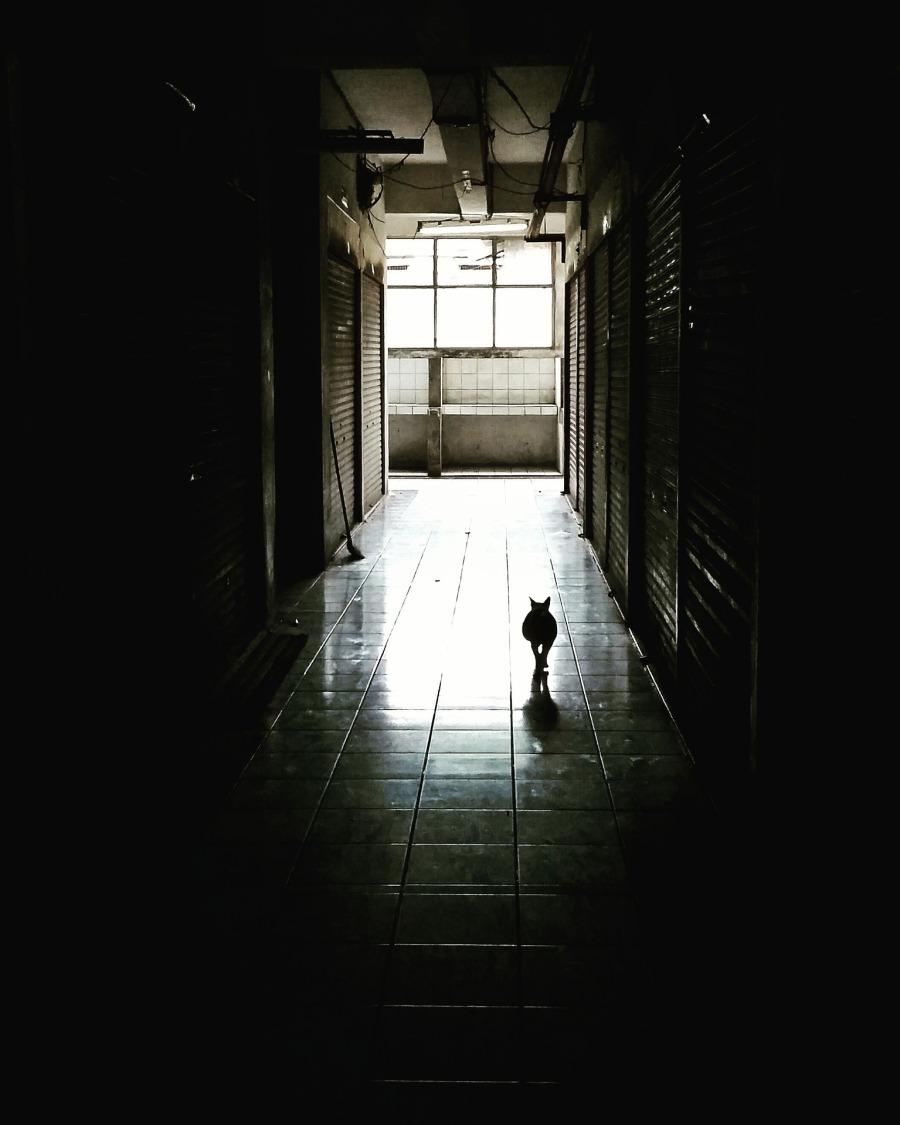 corridor-1398716_1920