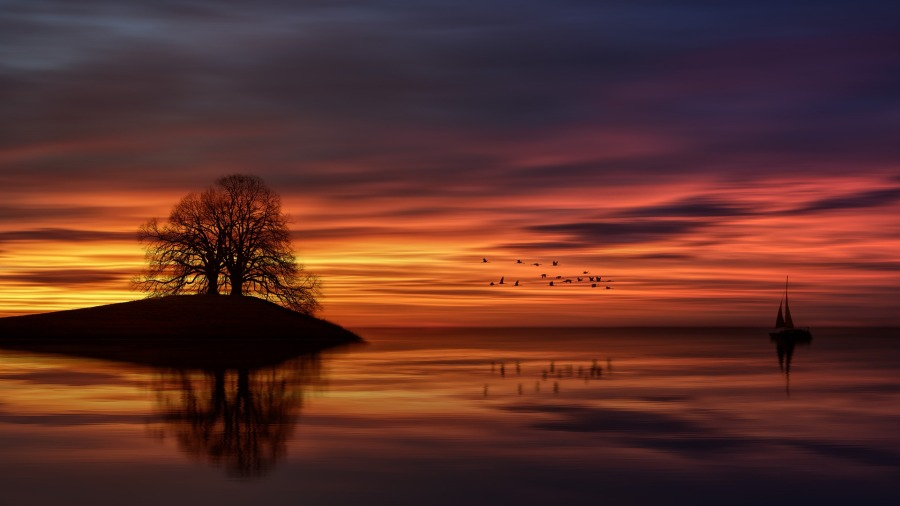 sunset-3092247_1920.jpg